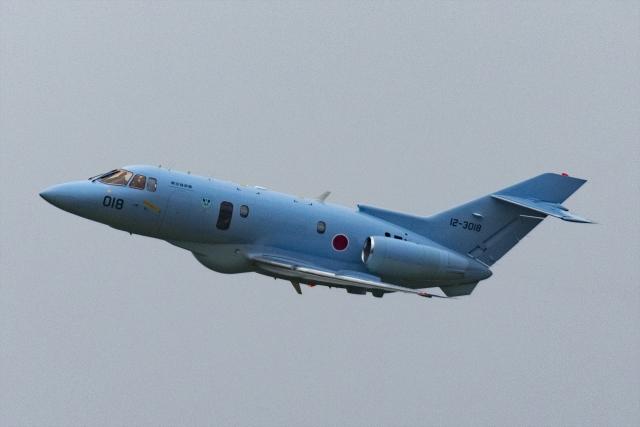Mochi7D2さんが、千歳基地で撮影した航空自衛隊 U-125A(Hawker 800)の航空フォト(飛行機 写真・画像)