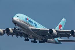 Airliners Freakさんが、ジョン・F・ケネディ国際空港で撮影した大韓航空 A380-861の航空フォト(飛行機 写真・画像)