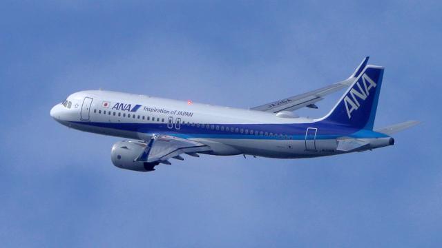 撮り撮り人さんが、岡山空港で撮影した全日空 A320-271Nの航空フォト(飛行機 写真・画像)