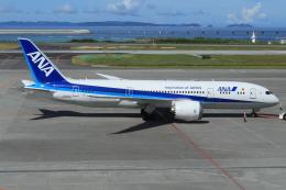 キイロイトリさんが、那覇空港で撮影した全日空 787-8 Dreamlinerの航空フォト(飛行機 写真・画像)