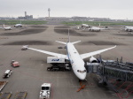 ガスパールさんが、羽田空港で撮影した全日空 787-9の航空フォト(飛行機 写真・画像)