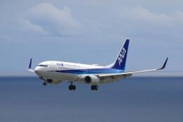じーのさんさんが、八丈島空港で撮影した全日空 737-881の航空フォト(飛行機 写真・画像)