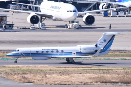 Jyunpei Ohyamaさんが、羽田空港で撮影した海上保安庁 G-V Gulfstream Vの航空フォト(飛行機 写真・画像)
