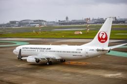 kikiさんが、福岡空港で撮影した日本トランスオーシャン航空 737-8Q3の航空フォト(飛行機 写真・画像)