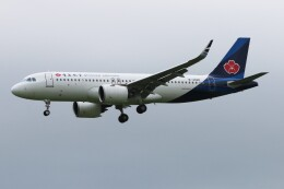青春の1ページさんが、成田国際空港で撮影した青島航空 A320-271Nの航空フォト(飛行機 写真・画像)