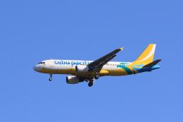 inyoさんが、成田国際空港で撮影したセブパシフィック航空 A320-214の航空フォト(飛行機 写真・画像)