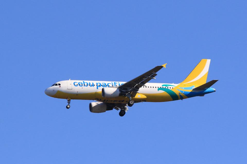inyoさんのセブパシフィック航空 Airbus A320 (RP-C3262) 航空フォト