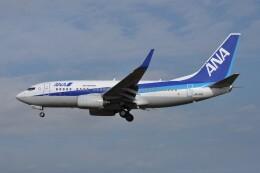 kumagorouさんが、仙台空港で撮影した全日空 737-781の航空フォト(飛行機 写真・画像)
