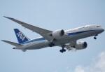 takikoki50000さんが、伊丹空港で撮影した全日空 787-8 Dreamlinerの航空フォト(飛行機 写真・画像)