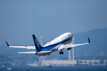 Kenny600mmさんが、中部国際空港で撮影した全日空 737-881の航空フォト(飛行機 写真・画像)