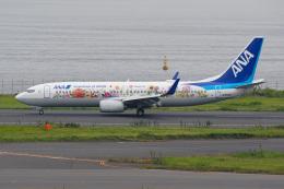 このはさんが、羽田空港で撮影した全日空 737-881の航空フォト(飛行機 写真・画像)