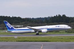 Jyunpei Ohyamaさんが、成田国際空港で撮影した全日空 787-10の航空フォト(飛行機 写真・画像)