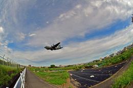 鈴鹿@風さんが、名古屋飛行場で撮影した航空自衛隊 C-130H Herculesの航空フォト(飛行機 写真・画像)