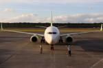 BOEING737MAX-8さんが、熊本空港で撮影したソラシド エア 737-81Dの航空フォト(飛行機 写真・画像)