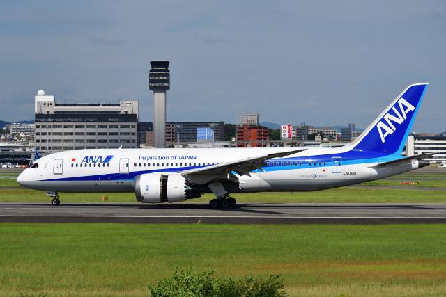 かえでさんが、伊丹空港で撮影した全日空 787-8 Dreamlinerの航空フォト(飛行機 写真・画像)