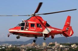 walker2000さんが、名古屋飛行場で撮影した名古屋市消防航空隊 AS365N3 Dauphin 2の航空フォト(飛行機 写真・画像)