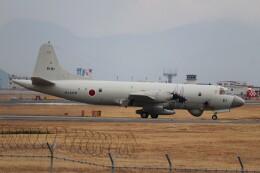 hanatomo735さんが、岩国空港で撮影した海上自衛隊 OP-3Cの航空フォト(飛行機 写真・画像)