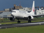 うすさんが、伊丹空港で撮影した日本航空 737-846の航空フォト(飛行機 写真・画像)