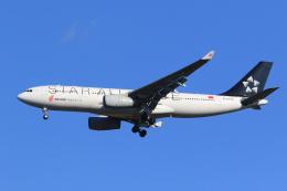 inyoさんが、成田国際空港で撮影した中国国際航空 A330-243の航空フォト(飛行機 写真・画像)