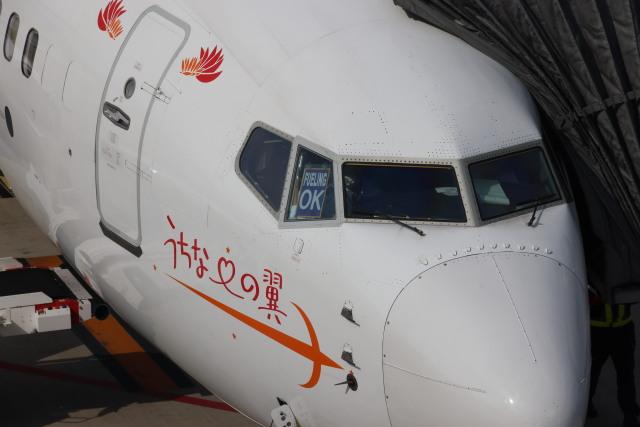 senchouさんが、福岡空港で撮影した日本トランスオーシャン航空 737-8Q3の航空フォト(飛行機 写真・画像)