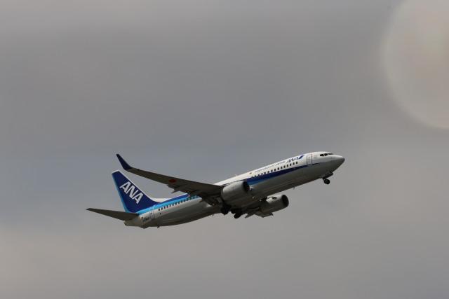 senchouさんが、福岡空港で撮影した全日空 737-881の航空フォト(飛行機 写真・画像)