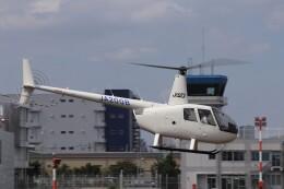 KAZFLYERさんが、東京ヘリポートで撮影したオートパンサー R44 IIの航空フォト(飛行機 写真・画像)