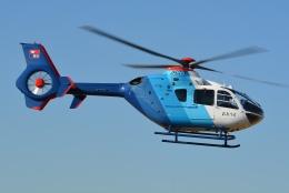 ブルーさんさんが、名古屋飛行場で撮影した中日新聞社 EC135P2の航空フォト(飛行機 写真・画像)