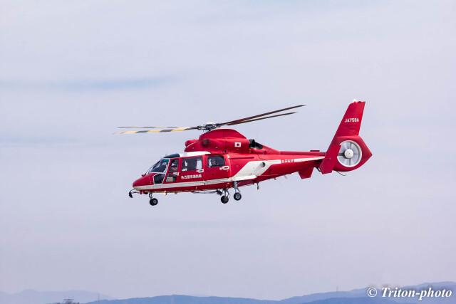 triton@blueさんが、名古屋飛行場で撮影した名古屋市消防航空隊 AS365N3 Dauphin 2の航空フォト(飛行機 写真・画像)