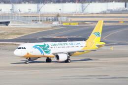 utarou on NRTさんが、成田国際空港で撮影したセブパシフィック航空 A320-214の航空フォト(飛行機 写真・画像)