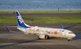 かっきーさんが、羽田空港で撮影した全日空 737-881の航空フォト(飛行機 写真・画像)