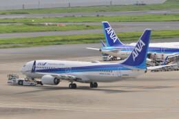KKiSMさんが、羽田空港で撮影した全日空 737-8ALの航空フォト(飛行機 写真・画像)