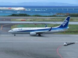 Tradel View FUKUROさんが、那覇空港で撮影した全日空 737-881の航空フォト(飛行機 写真・画像)