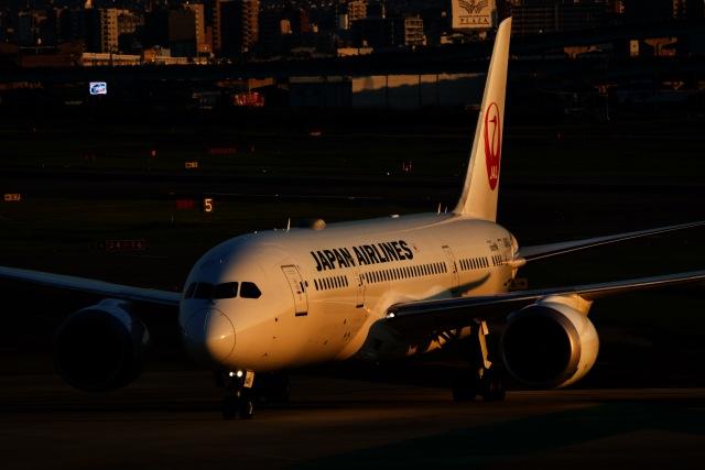 M.airphotoさんが、福岡空港で撮影した日本航空 787-8 Dreamlinerの航空フォト(飛行機 写真・画像)