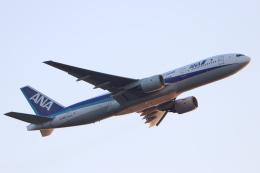 imosaさんが、羽田空港で撮影した全日空 777-281の航空フォト(飛行機 写真・画像)