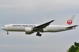 @たかひろさんが、伊丹空港で撮影した日本航空 777-246/ERの航空フォト(飛行機 写真・画像)