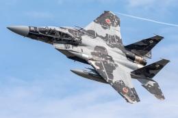 まんぼ しりうすさんが、小松空港で撮影した航空自衛隊 F-15DJ Eagleの航空フォト(飛行機 写真・画像)