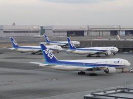 cassiopeiaさんが、羽田空港で撮影した全日空 777-281/ERの航空フォト(飛行機 写真・画像)