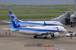 乙事さんが、羽田空港で撮影した全日空 A320-271Nの航空フォト(飛行機 写真・画像)