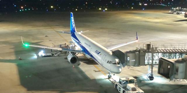 JF7VVLさんが、伊丹空港で撮影した全日空 A321-211の航空フォト(飛行機 写真・画像)