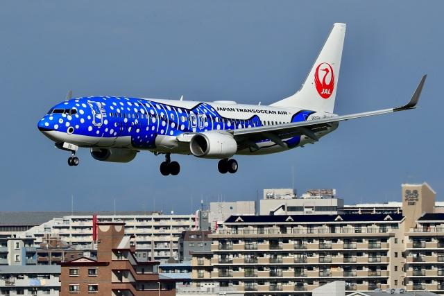 くれないさんが、福岡空港で撮影した日本トランスオーシャン航空 737-8Q3の航空フォト(飛行機 写真・画像)