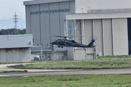 atskikuさんが、名古屋飛行場で撮影した航空自衛隊 UH-60Jの航空フォト(飛行機 写真・画像)