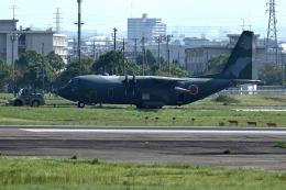 atskikuさんが、名古屋飛行場で撮影した航空自衛隊 C-130H Herculesの航空フォト(飛行機 写真・画像)