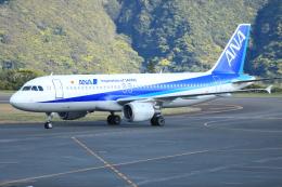 kando-yamaさんが、八丈島空港で撮影した全日空 A320-211の航空フォト(飛行機 写真・画像)