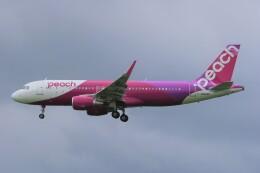 みるぽんたさんが、成田国際空港で撮影したピーチ A320-214の航空フォト(飛行機 写真・画像)