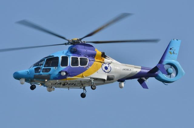 ブルーさんさんが、東京ヘリポートで撮影した東邦航空 EC155Bの航空フォト(飛行機 写真・画像)