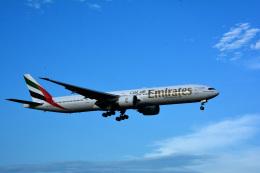 アルビレオさんが、成田国際空港で撮影したエミレーツ航空 777-36N/ERの航空フォト(飛行機 写真・画像)