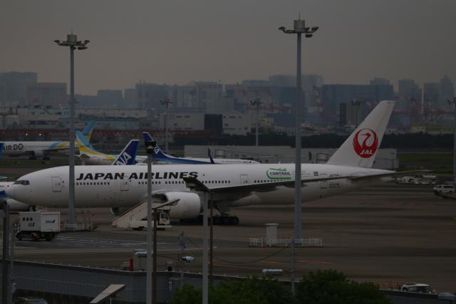 aki@飛行機好きな少年さんが、羽田空港で撮影した日本航空 777-246/ERの航空フォト(飛行機 写真・画像)