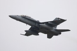 hanatomo735さんが、岩国空港で撮影したアメリカ海兵隊 F/A-18D Hornetの航空フォト(飛行機 写真・画像)