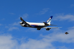TAKAHIDEさんが、成田国際空港で撮影した日本貨物航空 747-8KZF/SCDの航空フォト(飛行機 写真・画像)