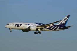szkkjさんが、成田国際空港で撮影した全日空 787-8 Dreamlinerの航空フォト(飛行機 写真・画像)